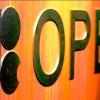 OPEC üretimi 30 milyon varilde devam edecek