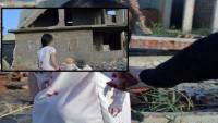 Mısır'da Halep Videosu Çekerken Yakalandılar