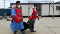 Birleşmiş Milletler açıkladı: Libya'da batan göçmen botunda 66 kişi yaşamını yitirdi