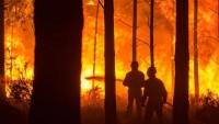 Portekiz'deki orman yangınlarında ölü sayısı 35'e yükseldi