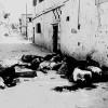 Sabra ve Şatilla Katliamının Yıldönümünde Hamas: Katiller Cezalandırılmalı