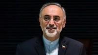 Salihi: İran aleyhindeki yaptırımlar üç haftaya kadar kaldırılıyor