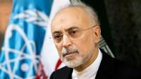 Ali Ekber Salihi: Nükleer anlaşmayı bozanlara ağır darbe vuracağız