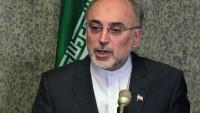 Salihi: Komşu ülkeler İran ile nükleer işbirliğine hazır