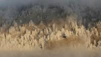 Rus helikopteri Sibirya'da düştü