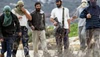Filistinli Gençler Yahudi Yerleşimcilerin Kaçırdığı İki Çocuğu Kurtardı 
