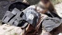 IŞİD Teröristlerine Yönelik İç Tasfiyeler Sürüyor