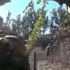 Suriye Ordusu, Yurt Genelinde Terörle Mücadeleyi Sürdürüyor