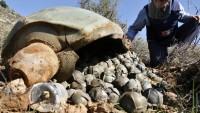 Suudi Arabistan, Brezilya menşeli misket bomba kullanıyor
