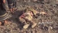 Suudi Arabistan'ın güneyinde 20 Suudi işbirlikçisi öldürüldü