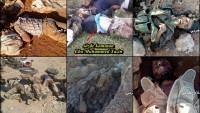 Suriye Ordusu ve Hizbullah Mücahidleri Teröristleri Bozguna Uğrattı: 2 Gün Süren Çatışmalarda 800 Terörist Ölü, 1700 Terörist Yaralı