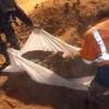 Hama Kırsalında Nusra Teröristlerince Katledilmiş İnsanlara Ait İki Toplu Mezar Bulundu