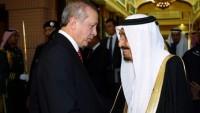 Suud ve Türkiye, Yemen'e Terörist Gönderiyor