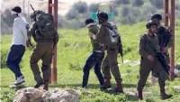 Siyonist İsrail Güçleri Bu Sabah Batı Yaka'da 47 Filistinli Genci Tutukladı