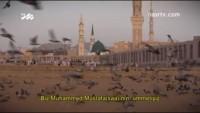 Biz Muhammed Mustafa (s.a.v)'nın Ümmetiyiz…