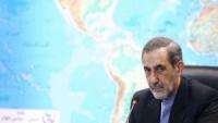 Velayeti: İran, Musul operasyonunda direkt müdahil değildir