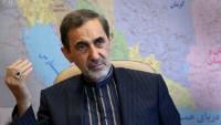 Ali Ekber Velayeti: İmam Hamaney, sadece Arabistan'ı uyarmadı