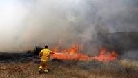 Siyonist İsrail, Basit Uçurtmalar Karşısında Aciz Kaldı