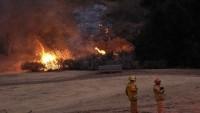 ABD'deki yangında beş bin kişi tahliye edildi