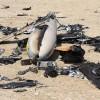 Yemenli Komutan: İHA, Düşman Hedeflerine Saldırı İçin Yeni Silahımızdır